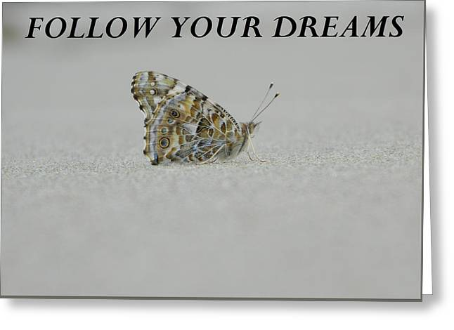 Anti Greeting Cards - Follow Your Dreams - blk Greeting Card by Gallery Of Hope