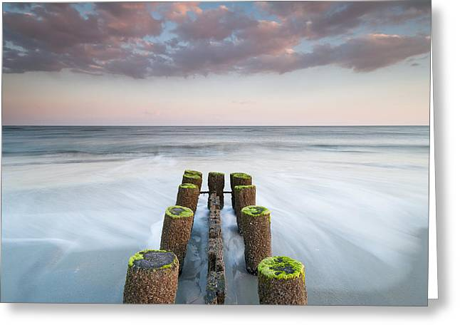 Moss Green Greeting Cards - Folly Beach Charleston South Carolina Erosion Control Timber Groin Greeting Card by Mark VanDyke