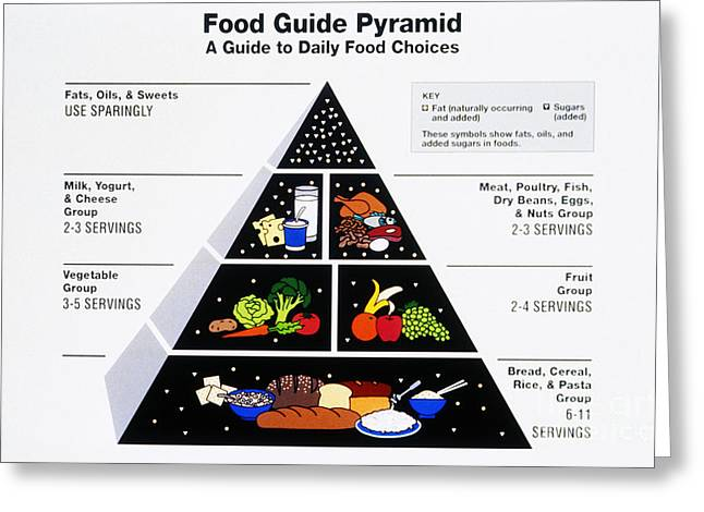 Nutritional Greeting Cards - Food Pyramid Greeting Card by Photo Researchers
