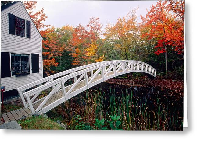 Somesville Maine Greeting Cards - Footbridge and Foliage Greeting Card by George Oze