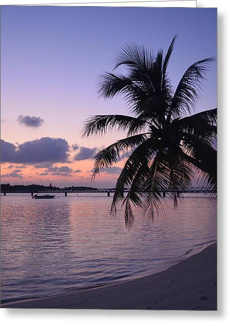 Tropical Beach Greeting Cards - Footsteps Greeting Card by Corinne Rhode