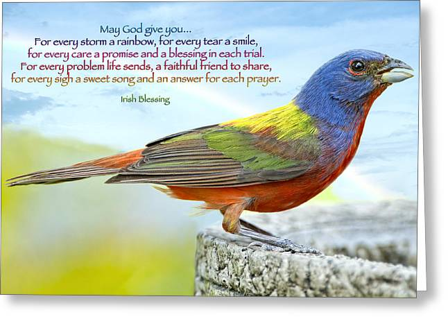 Problem Greeting Cards - For Every Storm a Rainbow Irish Blessing Greeting Card by Bonnie Barry