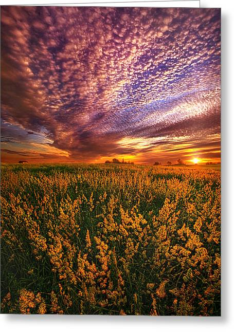 Country Life Greeting Cards - For Some A Way To Feel Greeting Card by Phil Koch