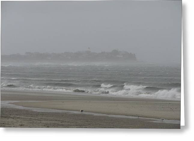 Best Sellers -  - Storm Clouds Cape Cod Greeting Cards - For The Birds Greeting Card by Brian Mazzoli