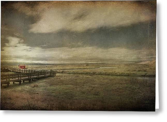 Marshes Digital Greeting Cards - For The Lonely Souls Greeting Card by Laurie Search