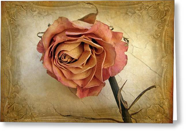 For You Greeting Card by Jessica Jenney