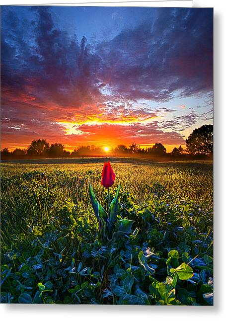 Sun Ray Greeting Cards - For Your Love Greeting Card by Phil Koch