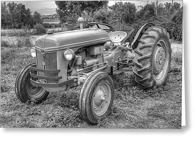 Catapillars Greeting Cards - Ford Farm Tractor Black and White Greeting Card by Ken Smith