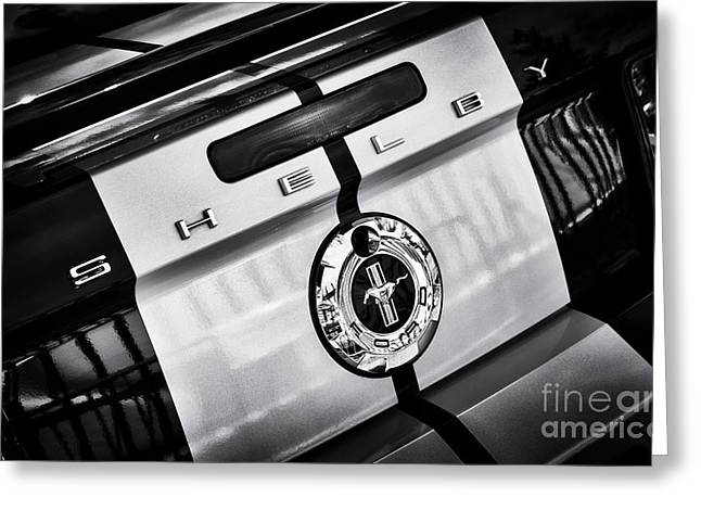 Shelby Mustangs Greeting Cards - Ford Shelby Mustang GT-H Greeting Card by Tim Gainey