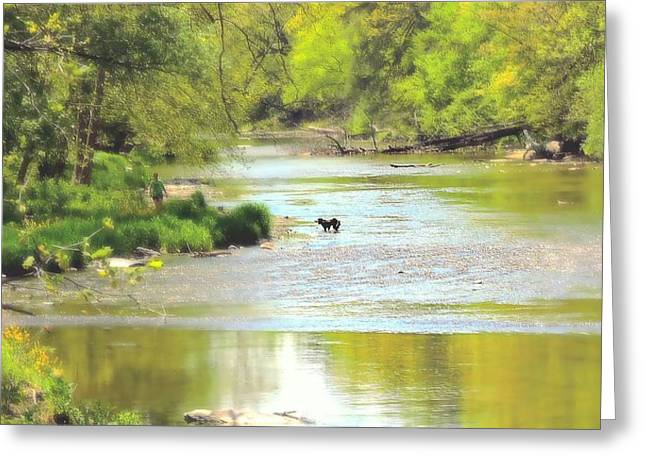 Fording A Spring Morn Greeting Card by Tami Quigley
