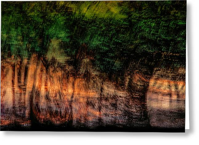 Tree Abstract Greeting Cards - Forest At Sundown Greeting Card by Phyllis Clarke