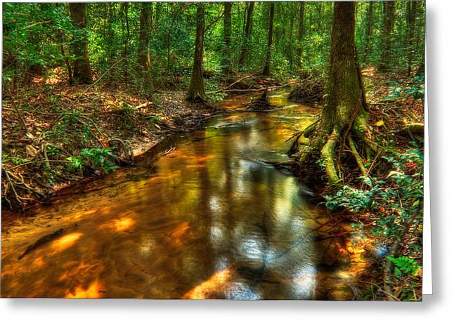 Beautiful Creek Greeting Cards - Forest Creek Greeting Card by Rich Leighton