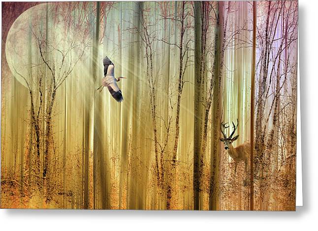 Birds Moon Greeting Cards - Forest Fantasy  Greeting Card by Jessica Jenney