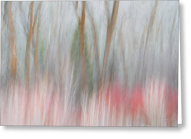 Forest Impression 2 Greeting Card by Leland D Howard