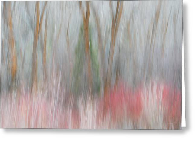 Forest Impression 3 Greeting Card by Leland D Howard