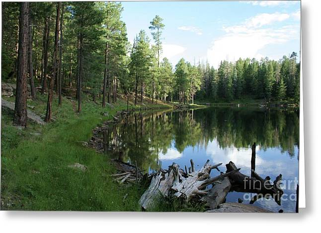 Kings Canyon Greeting Cards - Forest Lake Greeting Card by Julie Lueders