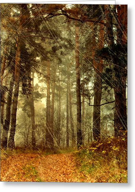 Walk Paths Mixed Media Greeting Cards - Forest Memories - Vintage Grunge Greeting Card by Georgiana Romanovna