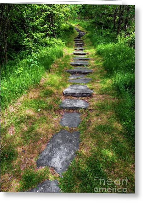 Forest Path Greeting Card by Adrian Evans
