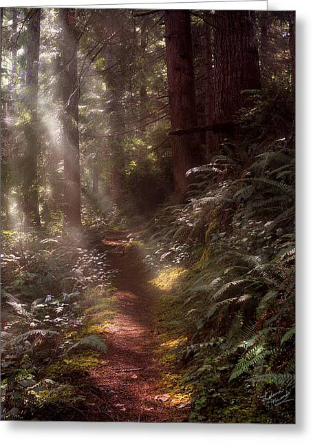 Forest Path Greeting Card by Leland D Howard