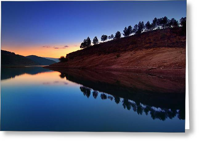 Vintage Greeting Cards - Forest reflection. Blue sunset Greeting Card by Guido Montanes Castillo