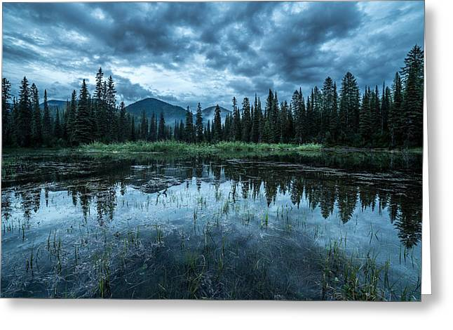Forest Reflection // Whitefish, Montana  Greeting Card by Nicholas Parker