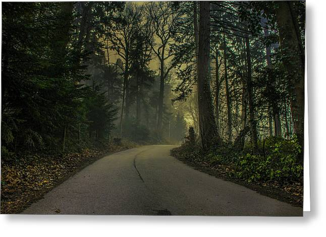 Forest Pyrography Greeting Cards - Forest Road Greeting Card by John Palmer