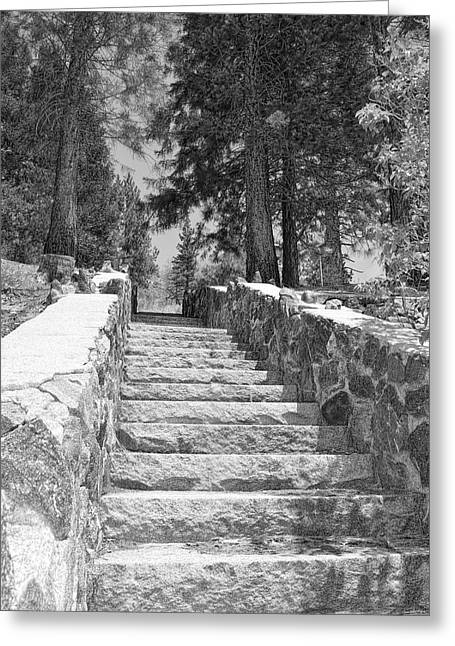 Angeles Forest Greeting Cards - Forest Stairway Greeting Card by Glenn McCarthy Art and Photography