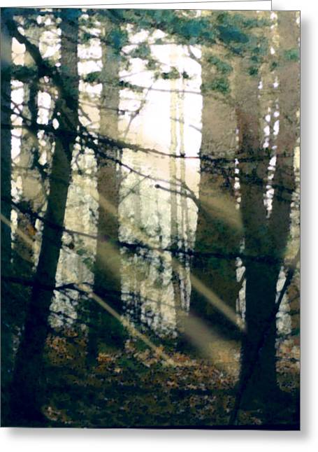 Sun Rays Paintings Greeting Cards - Forest Sunrise Greeting Card by Paul Sachtleben