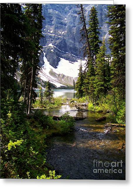 Best Sellers -  - Fed Greeting Cards - Forest View To Mountain Lake Greeting Card by Greg Hammond
