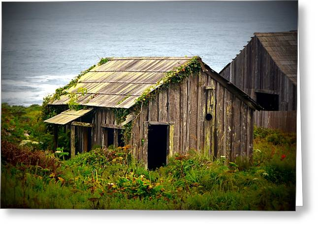 Forgotten By The Sea Greeting Card by Carla Parris