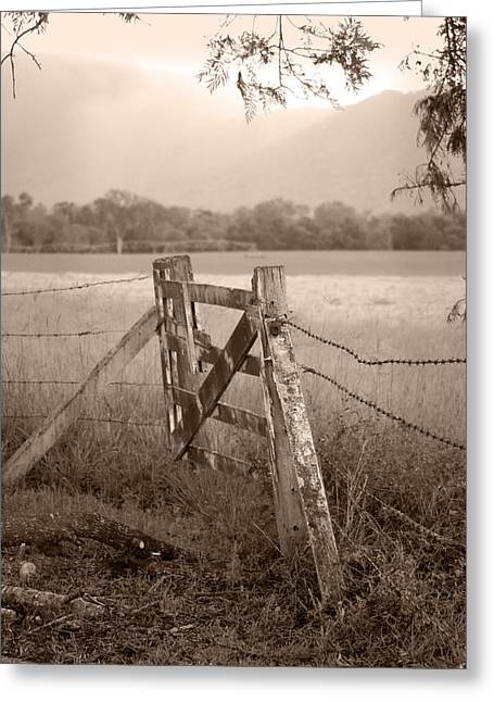 Fence Greeting Cards - Forgotten Fields 2 Greeting Card by Holly Kempe