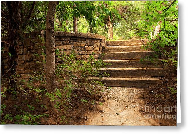 Tamyra Ayles Greeting Cards - Forgotten Stairs Greeting Card by Tamyra Ayles