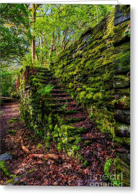 Dilapidated Digital Art Greeting Cards - Forgotten Steps Greeting Card by Adrian Evans
