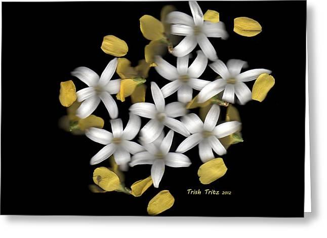 Forsythia Greeting Cards - Forsythia Meets Hyacinth Greeting Card by Trish Tritz