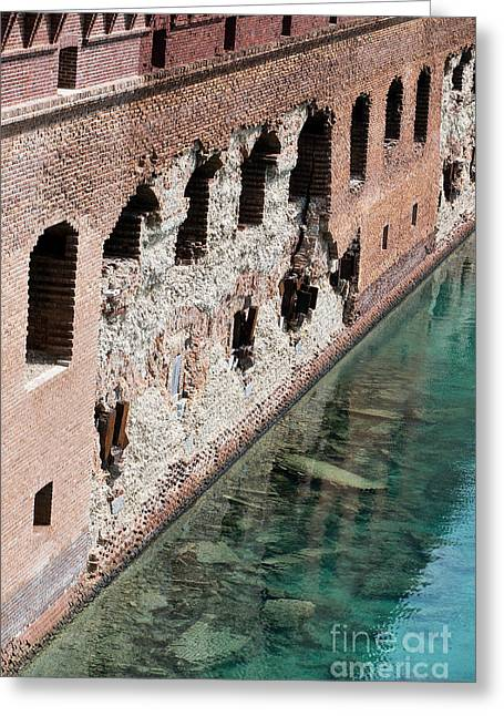 Historical Images Greeting Cards - Fort Jefferson crumbling bricks Greeting Card by Jason O Watson