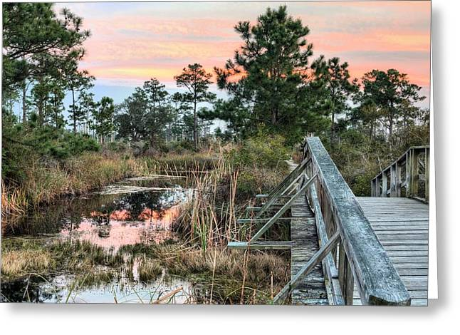 Florida Panhandle Sunset Greeting Cards - Fort Pickens Nature Trails Greeting Card by JC Findley