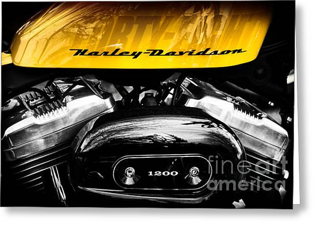 Coloured Greeting Cards - Forty Eight Harley Davidson Greeting Card by Tim Gainey