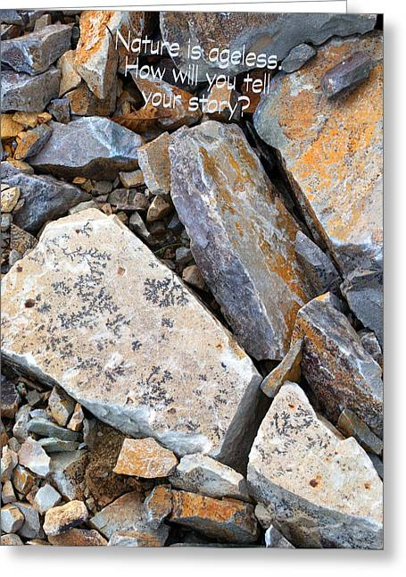 Ageless Greeting Cards - Fossils Greeting Card by MaJoR  Images