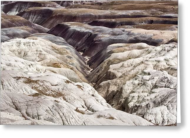 Petrified Forest National Park Greeting Cards - Four Million Geologic Years Greeting Card by Melany Sarafis