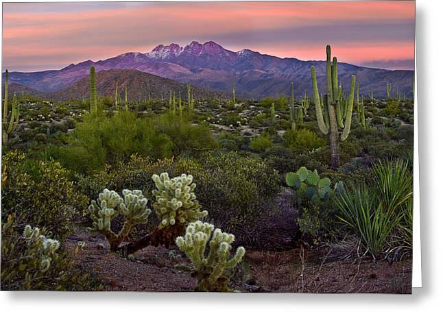 Fountain Greeting Cards - Four Peaks Sunset Greeting Card by Dave Dilli