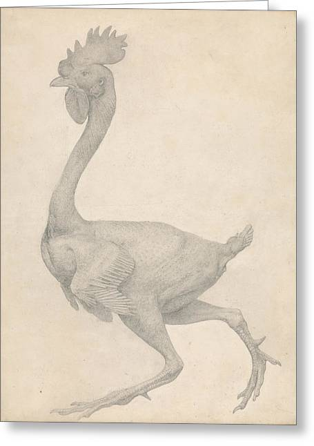Fowl, Lateral View With Most Feathers Removed  Greeting Card by George Stubbs