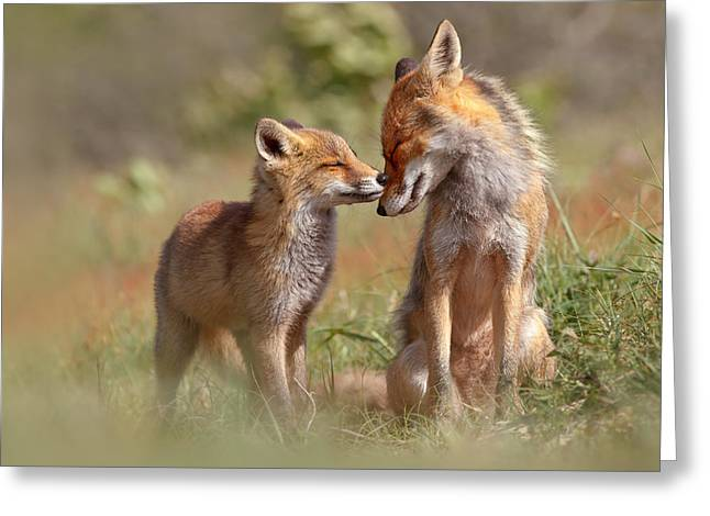 Bonding Greeting Cards - Fox Felicity Greeting Card by Roeselien Raimond