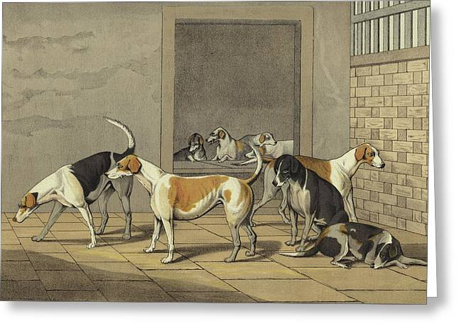 Fox Hounds Greeting Card by Henry Thomas Alken