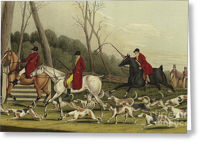 Fox Hunting Going Into Cover Greeting Card by Henry Thomas Alken