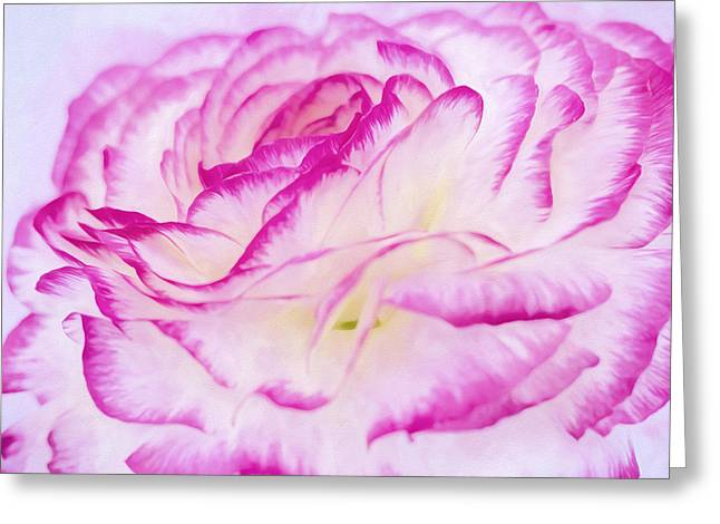 Recently Sold -  - Rose Petals Greeting Cards - Fragile Purple Paper Rose Greeting Card by Daphne Sampson