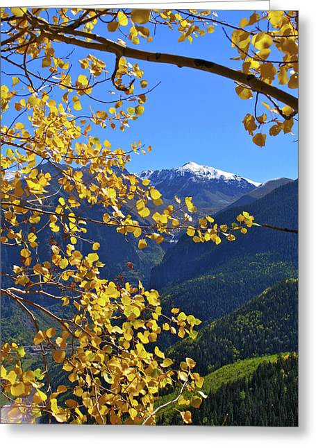 Snow Capped Greeting Cards - Framed by Fall Greeting Card by Scott Mahon
