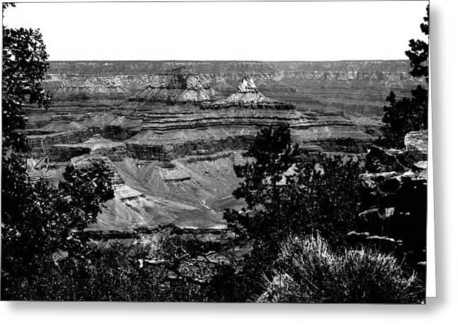 Framing The Grand Canyon Greeting Card by David Patterson