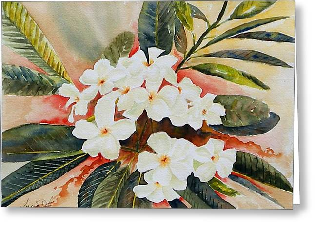 Watercolour Greeting Cards - Frangipani Greeting Card by Lucia Del