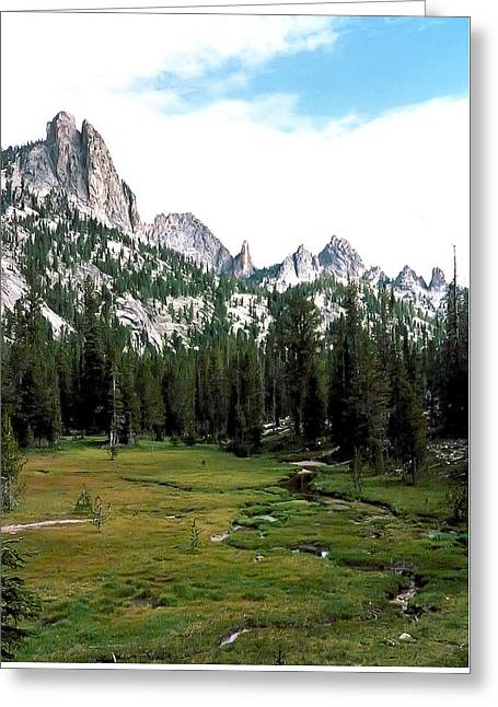 Frank Church Meadow Photograph Greeting Card by Kimberly Walker