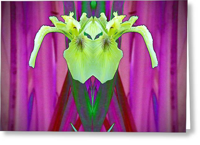 Freaky Iris Greeting Card by Pat Exum